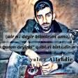 Sevil_Sevinc_-_Azeri_Mashup_2_(_Dj_Roshka)_Vol.Az