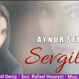Aynur Sevimli - Sevgilim 2019 ( Super Mahni)